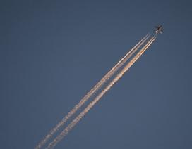 """UAE """"tố"""" máy bay chiến đấu Qatar đe dọa máy bay chở khách"""
