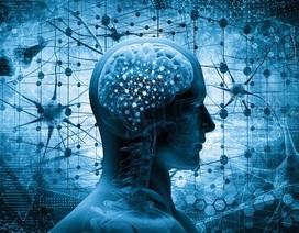 Người khỏe hơn có não bộ hoạt động tốt hơn