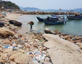 Bác đơn khiếu nại của chủ đầu tư dự án lấp Vịnh Nha Trang