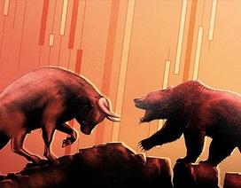 """Hàng trăm mã cổ phiếu """"đỏ lửa"""", cơ hội săn hàng giá rẻ?"""