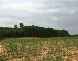 Dân hoang mang khi chủ đầu tư đòi đổi địa điểm dự án gần 4 nghìn tỷ tại Thanh Hóa
