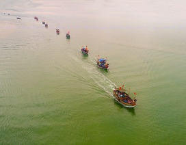 Động viên ngư dân bám biển trước lệnh cấm đánh bắt cá của Trung Quốc