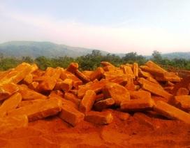 """Vụ cà phê cạnh mỏ đá chết bất thường: Phát hiện 2 mỏ khai thác """"chui""""!"""