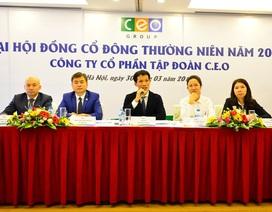 Tập đoàn CEO: Kiên định chiến lược đặc khu, tập trung mũi nhọn BĐS nghỉ dưỡng