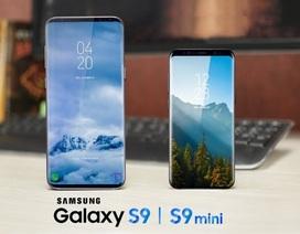 """Rộ tin Samsung Galaxy S9 ra bản """"mini"""" có giá rẻ hơn đáng kể"""