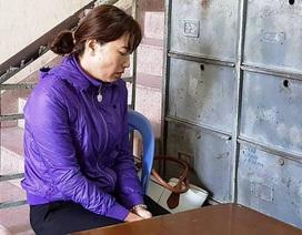 Trả hồ sơ vụ án bảo mẫu trường Mầm Xanh đánh trẻ