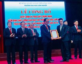 Trường đại học Lâm nghiệp Việt Nam đạt kiểm định chất lượng giáo dục