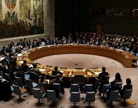 Bị từ chối điều tra chung, Nga đề nghị Liên Hợp Quốc họp khẩn vụ cựu điệp viên