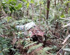 Đi hái lá cây, tá hoả phát hiện thi thể đang phân huỷ giữa rừng