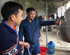 Giếng nước nhiễm dầu ở Hà Tĩnh: Hiện tượng rất bất thường!