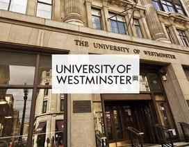 """Nhanh tay """"Săn"""" học bổng du học Anh Quốc lên tới 100% học phí cùng Westminster"""
