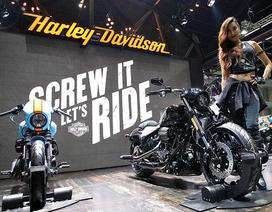 Harley-Davidson và Ducati lần đầu tiên cùng tham gia Việt Nam AutoExpo