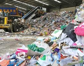 Trắc nghiệm: Kiểm tra kiến thức của bạn về rác thải và tái chế