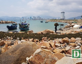 Chủ đầu tư dự án 33 triệu USD lấp Vịnh Nha Trang khiếu nại lần 2