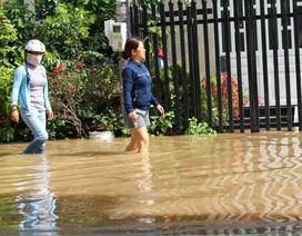 Hàng trăm hộ dân chịu cảnh ngập ngang gối cả ngày chỉ sau trận mưa đêm