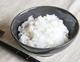 Ăn nhiều carbohydrates tinh chế có thể liên quan với mãn kinh sớm