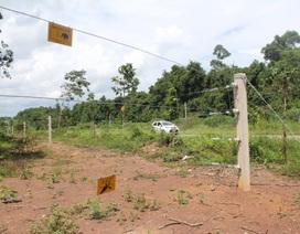 Chuyển giao hàng rào điện bảo vệ voi cho các chủ rừng