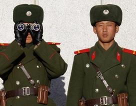 Báo Nhật Bản: Điệp viên Triều Tiên mất tích bí ẩn ở Trung Quốc