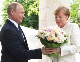 Bó hoa gây tranh cãi của Tổng thống Putin tặng Thủ tướng Đức