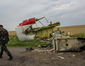 Nga phản bác kết luận của nhóm điều tra vụ bắn rơi MH17 khiến gần 300 người chết