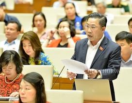 """Đại biểu Quốc hội muốn Thủ tướng dùng quyền """"trảm"""" cán bộ sai quấy"""