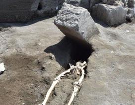 Nạn nhân Pompeii bị tảng đá nghiền nát khi chạy trốn núi lửa phun trào