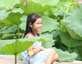 Đầm sen hồ Tây hút khách chụp ảnh