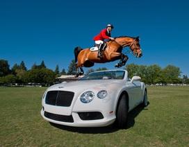 Cơ hội trải nghiệm văn hóa hoàng gia Anh cùng Bentley Hà Nội