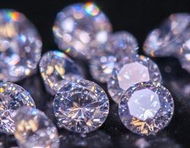 Học sinh tiểu học bị bắt vì trộm trang sức kim cương hơn 14 tỷ đồng