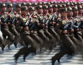"""Triều Tiên truy lùng """"quan chức tình báo ôm tiền bỏ trốn"""""""