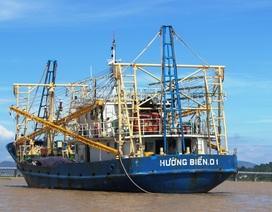Phú Yên vận động ngư dân tiếp tục vươn khơi bám biển