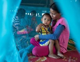 Khi toàn khu vực châu Á - TBD chung tay đẩy lùi dịch sốt rét