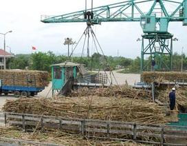 """Chưa hết lao đao, ngành mía đường đã đặt thêm mục tiêu """"khủng"""""""