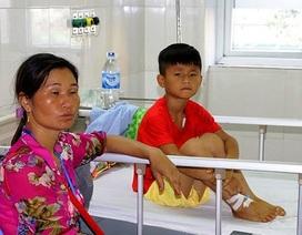 Một học sinh nhập viện do rắn cắn trong giờ ra chơi