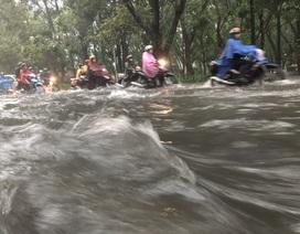 Nước chảy cuồn cuộn trước cửa ngõ sân bay Tân Sơn Nhất