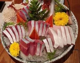 """Giới nhà giàu Việt """"săn lùng"""" cá Buri Nhật dịp năm mới để phát tài, sống thọ"""
