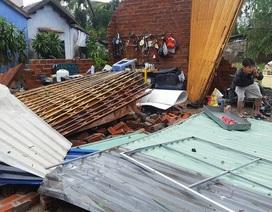 Khánh Hòa: Bão Damrey tàn phá khủng khiếp nhất trong 35 năm qua