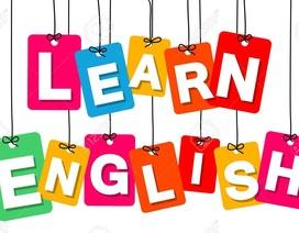 Trắc nghiệm kiểm tra độ thông thạo từ vựng tiếng Anh của bạn