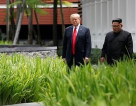 Lãnh đạo Mỹ - Triều thảnh thơi đi dạo sau bữa trưa