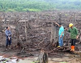Van khóa bị phá hoại, hồ thủy lợi trơ đáy giữa mùa mưa