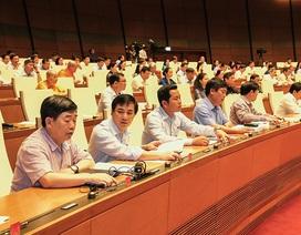 Quốc hội yêu cầu Chính phủ xử lý dứt điểm doanh nghiệp nhà nước sai phạm