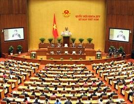 Trách nhiệm, tính tiền phong của cán bộ, đảng viên trước các vấn đề hệ trọng của đất nước