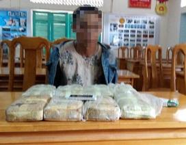 Bắt giữ đối tượng vận chuyển gần 48 nghìn viên ma túy từ Lào về Việt Nam