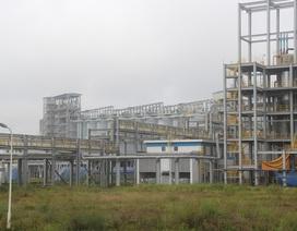 Thang máy gặp sự cố, một công nhân nhà máy Alumin thiệt mạng