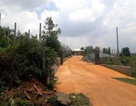 Vụ lấn chiếm hàng nghìn m2 đất rừng: Thêm nhiều cán bộ bị xử lý