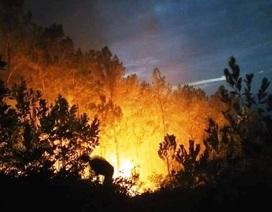 Cháy rừng thông giữa trưa, hàng trăm người đội nắng dập lửa