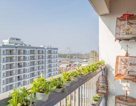 """Cuộc sống """"chuẩn xanh"""" của cư dân khu nhà ở xã hội lớn nhất Nam Sài Gòn"""