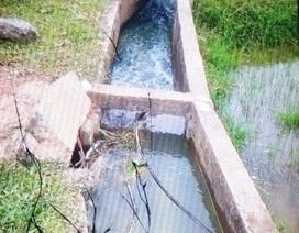 Bàng hoàng phát hiện thi thể người đàn ông dưới mương nước