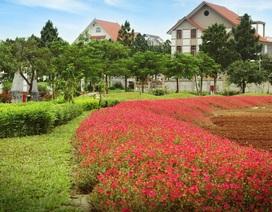 Khám phá khu đô thị đáng sống nhất phía Tây Hà Nội