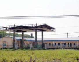 Bắt tạm giam cựu Tổng Giám đốc Ethanol Phú Thọ